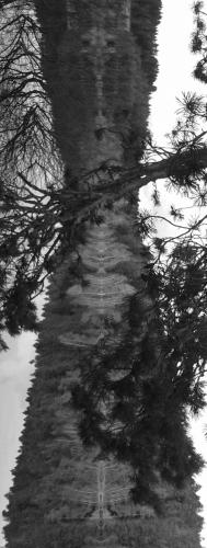 lac malague (2).jpg